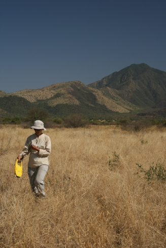 Vegetation surveys in the Lower Omo Valley (Ethiopia) aiming to compare modern savanna spatial dynamics with past land cover inferred from fossil pollen spectra