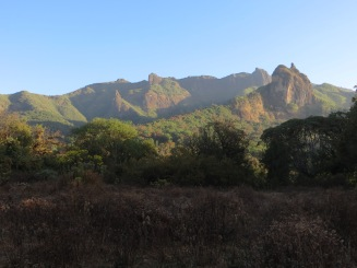 Afromontane environment at the southern slope of the Bale Mountains NP